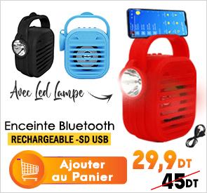 Haut Parleur Bluetooth Avec LED Lampe Portable Rechargeable