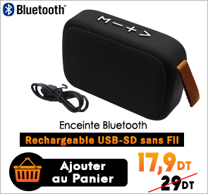 Haut Parleur Rechargeable Radio Bluetooth USB SD BT-03