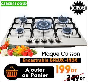 Plaque De Cuisson À Gaz 5Feux Inox GÉNÉRAL GOLD GG-S5605