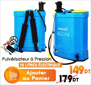Pulvérisateur À Pression 2en1 Electrique Et Manuelle 16Litres