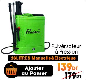 Pulvérisateur à Pression 2en1 Electrique et Manuelle 16Litres PANDORA PEPS-16L